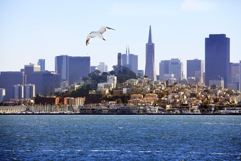 San Francisco stock foto's