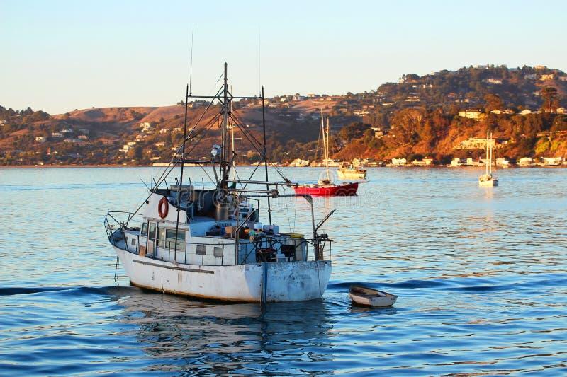 San Francisco Bay: Het leven op Water 1 royalty-vrije stock foto's