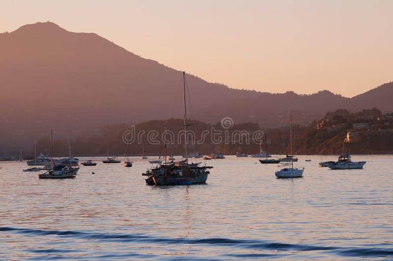 San Francisco Bay: Leben auf dem Wasser lizenzfreie stockfotografie