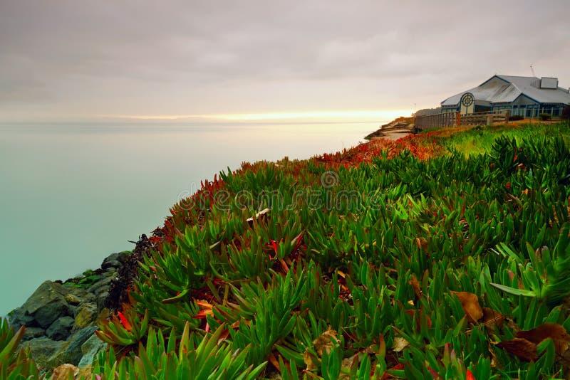San Francisco Bay mistmorgon arkivbild