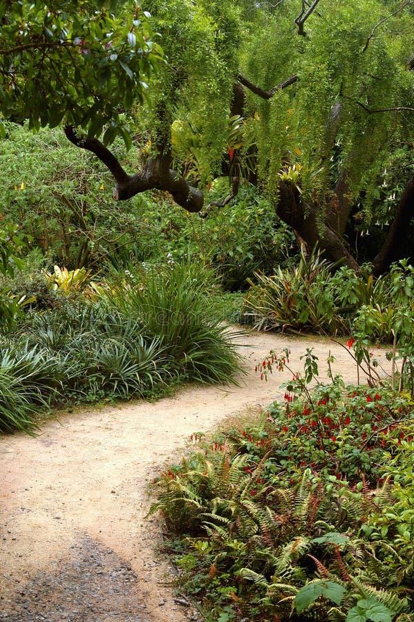 San Francisco Botanical Garden royalty free stock photos