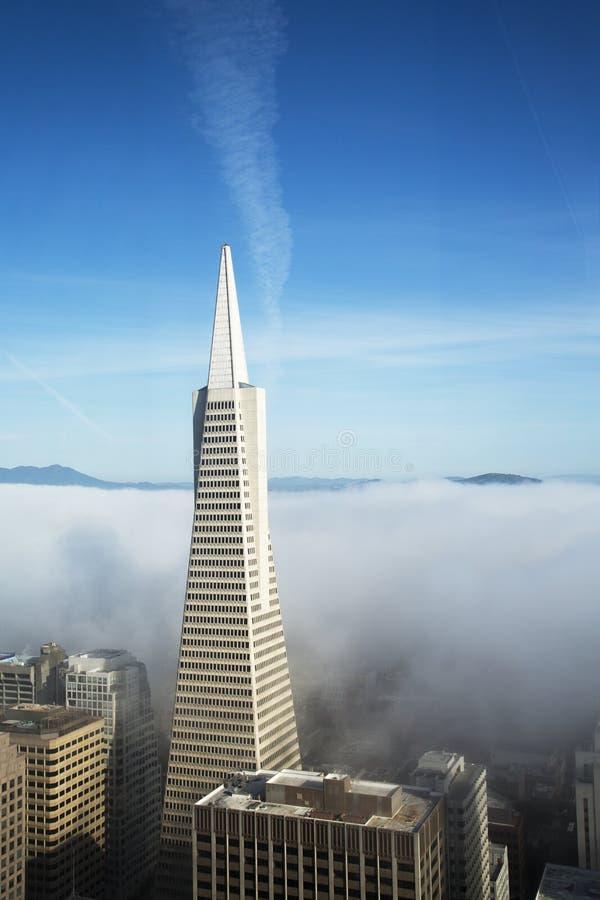Flächenansicht über Transamerica Pyramide und Stadt von San Francisco bedeckte durch dichten Nebel lizenzfreie stockbilder