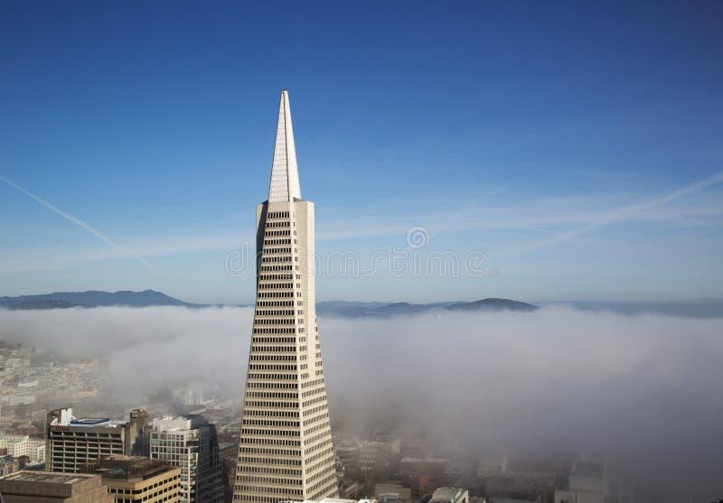 Flächenansicht über Transamerica Pyramide und Stadt von San Francisco bedeckte durch dichten Nebel stockfotografie