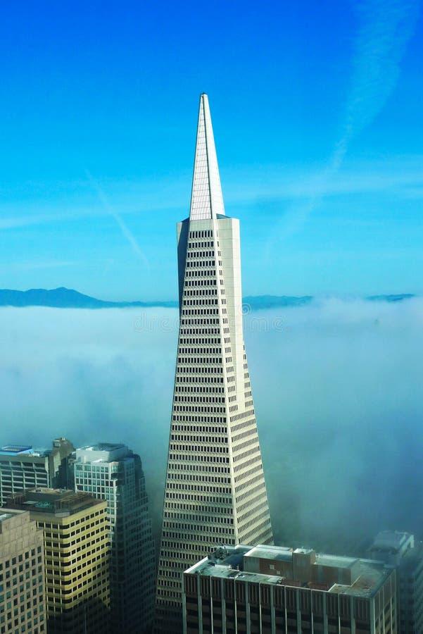 Flächenansicht über Transamerica Pyramide und Stadt von San Francisco bedeckte durch dichten Nebel stockbilder