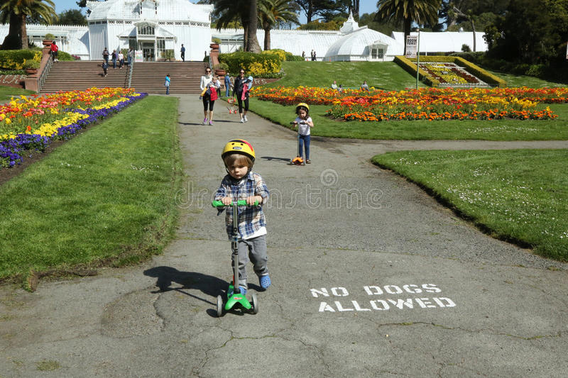 Families enjoy sunny day at Golden Gate Park in San Francisco. SAN FRANCISCO,CA - MARCH 29: Families enjoy sunny day at Golden Gate Park in San Francisco on royalty free stock photo