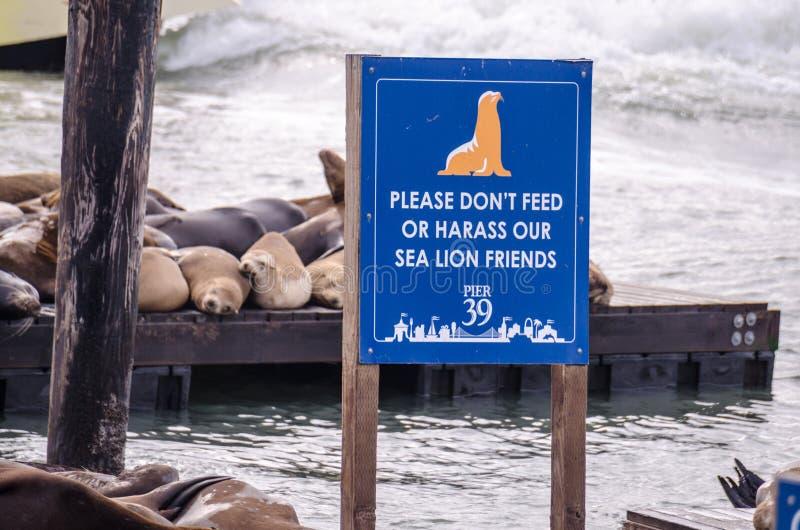 SAN FRANCISCO CA: Tecknet varnar besökare för att inte mata eller harasss sjölejonen på skeppsdockorna av pir 39 i San Francisco royaltyfria bilder