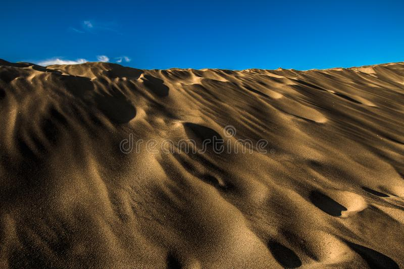 There life over the sand dune. San Francisco California the coast on a summer afternoon looking over sand dune stock image