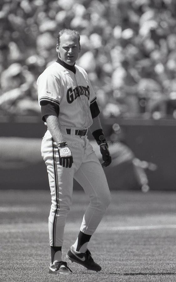 Matt Williams. San Francisco Giants infielder Matt Williams. Image taken from b&w negative stock image