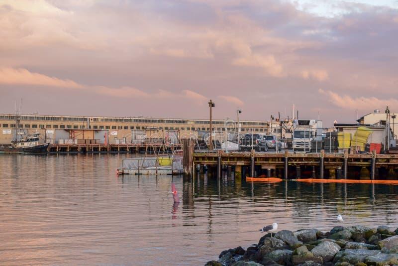 San Francisco Harbor - Fisherman& x27; s Werf royalty-vrije stock foto