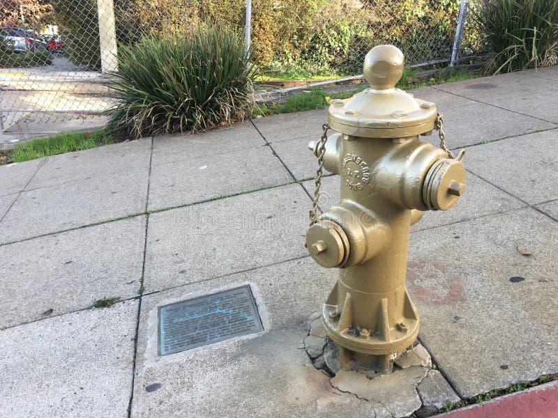 San Francisco histórico, oro, boca de incendios 1 fotos de archivo libres de regalías