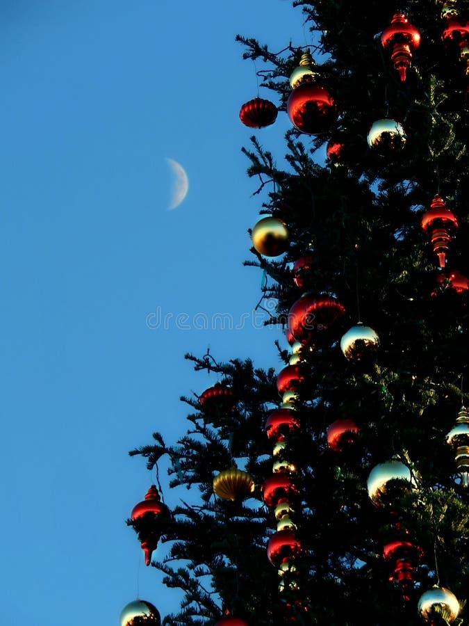 San Francisco Holiday Reflection lizenzfreies stockfoto