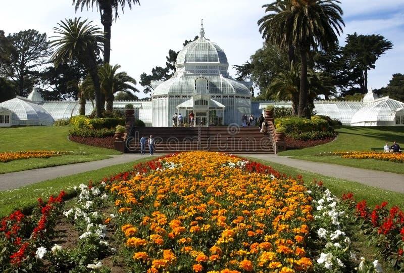 San Francisco konserwatorium kwiaty obrazy royalty free