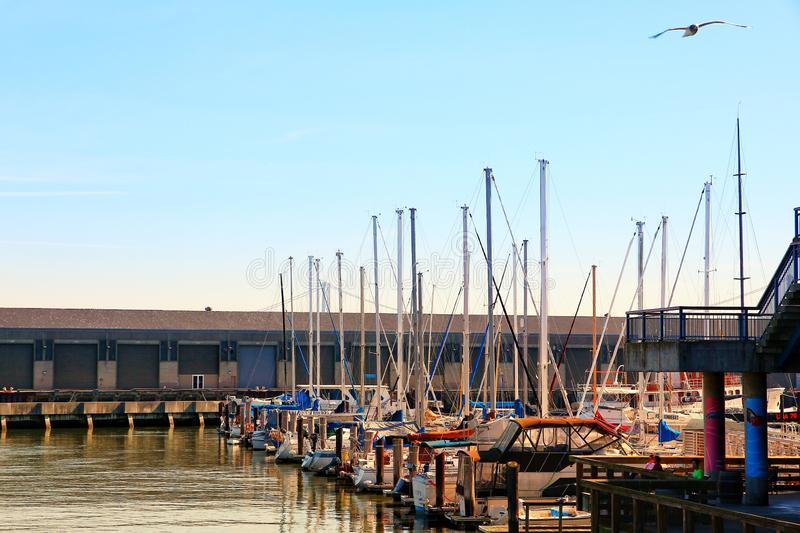 San Francisco Marina Yacht Harbor no por do sol imagem de stock royalty free