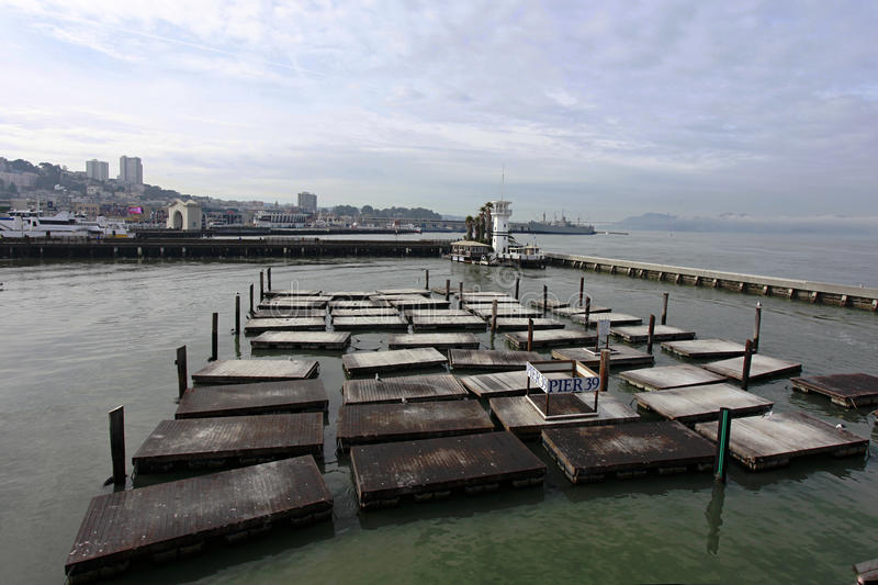 Download San Francisco Missing Sea Lions On Pier 39 Editorial Photography - Image: 12422257