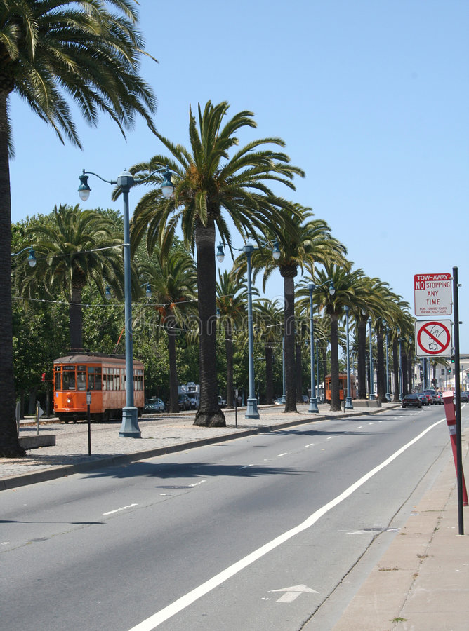 San Francisco Palm Trees royalty free stock images
