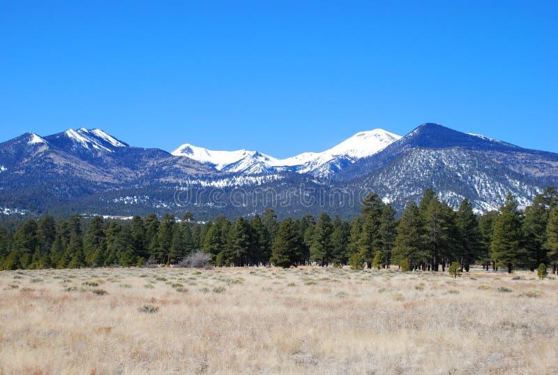 San Francisco Peaks in Arizona royalty free stock photos