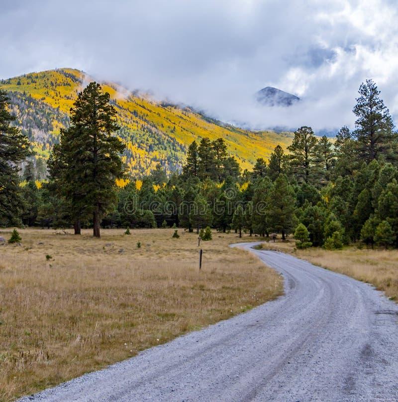 San Francisco Peaks Near Flagstaff AZ på en stormig nedgångdag royaltyfria bilder