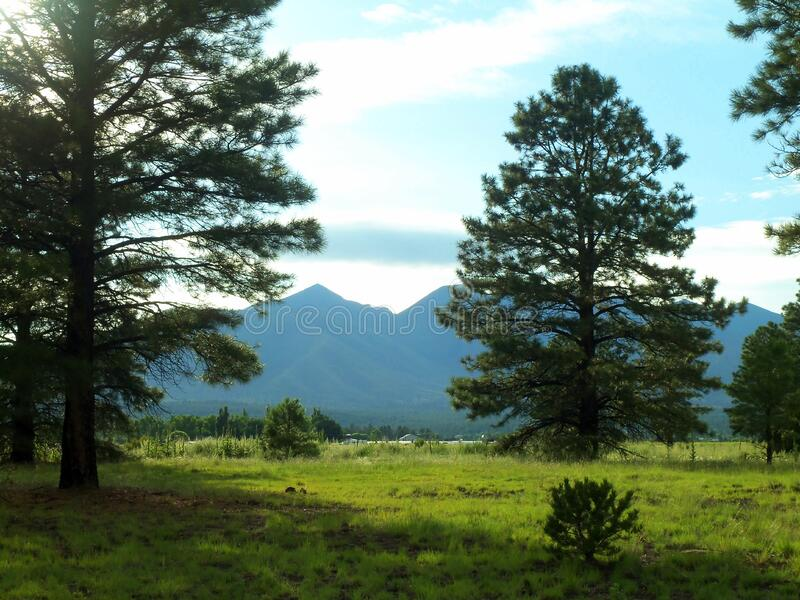 San Francisco Peaks stock images