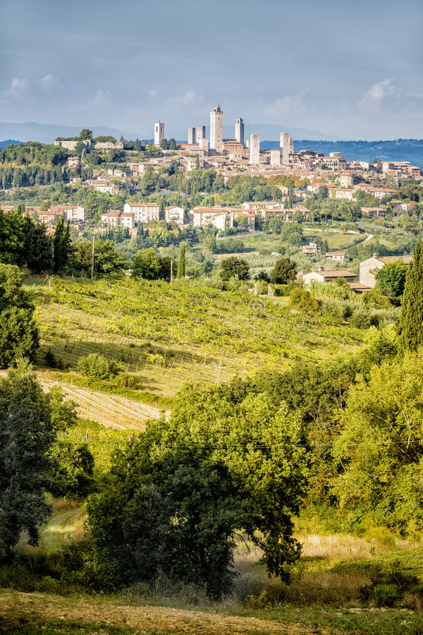 San Gimignano obraz royalty free