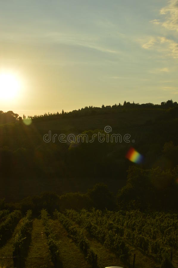 San Gimignano royalty-vrije stock fotografie