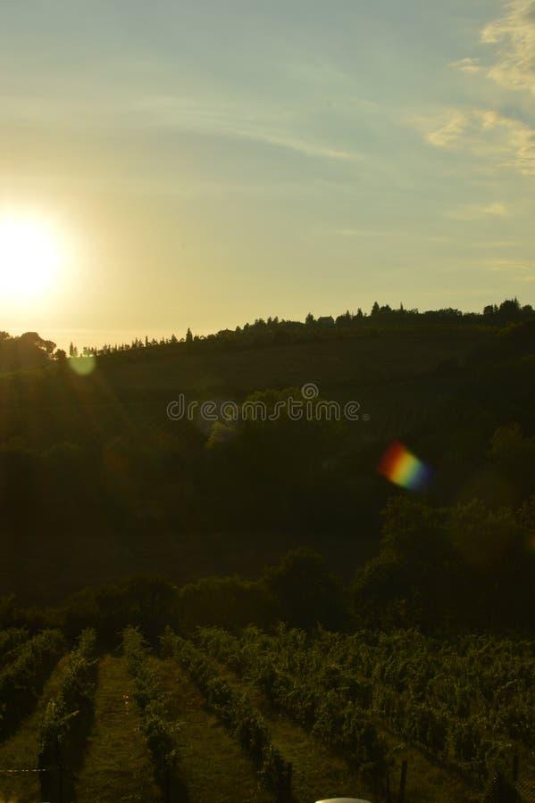 San Gimignano photographie stock libre de droits