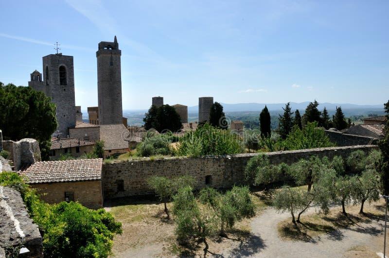 San Gimignano drzewo oliwne, ściana i góruje obraz stock
