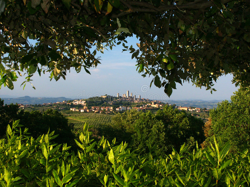 Download San Gimignano From Oposing Hill Stock Image - Image of leaf, leaves: 40923