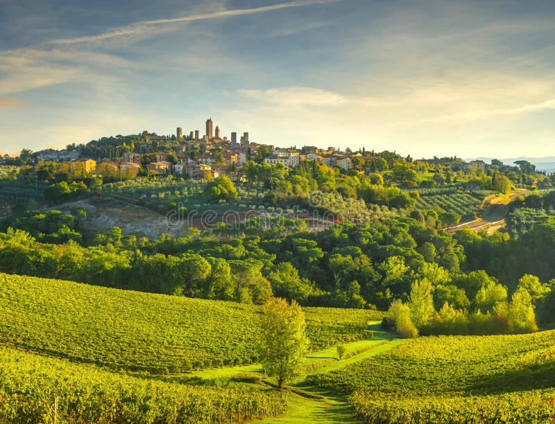 San Gimignano panoramic medieval town towers skyline and vineyards. Tuscany, Italy. San Gimignano medieval town towers skyline and vineyards countryside stock image