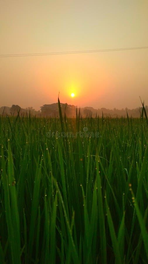 San good morning. Good morning photo stock photo