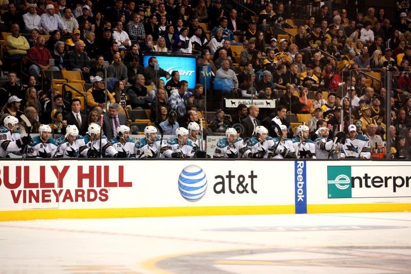Download San Jose Sharks bench editorial stock image. Image of hockey - 21718179