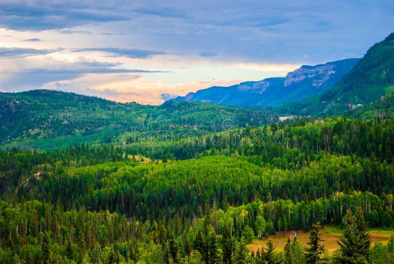 San Juan Mountain Valley Large Pine Forest Colorado fotografía de archivo
