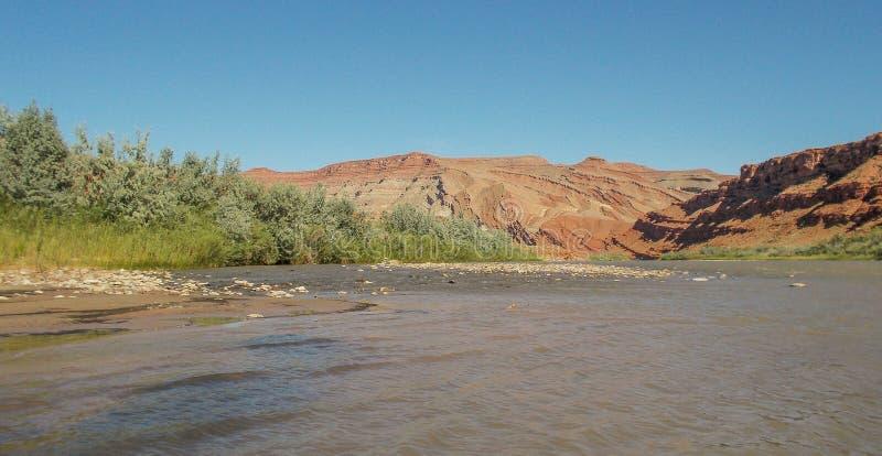 San Juan River Raplee Anticline arkivfoto