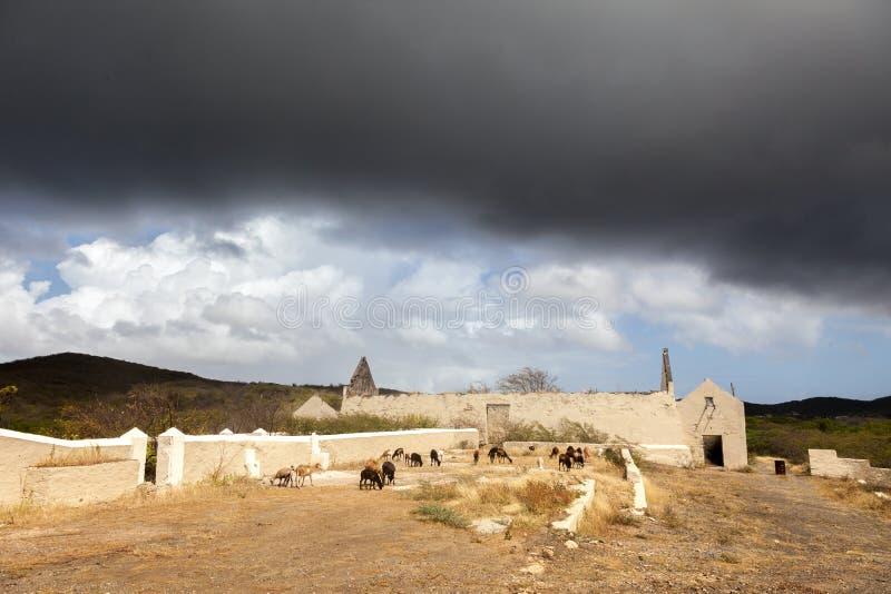 San Juan - vistas em torno da ilha das Caraíbas de Curaçau imagens de stock