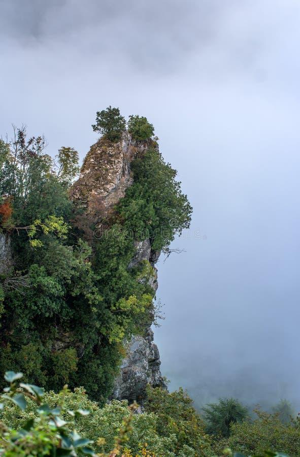 San Marino Italien Lutningen av berget som täckas med träd som döljas i mist royaltyfri foto