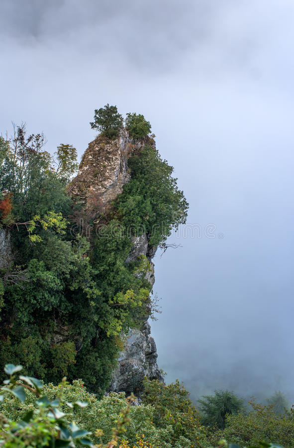 San Marino, Italy. The slope of the mountain, covered with trees, shrouded in mist. royalty free stock photo