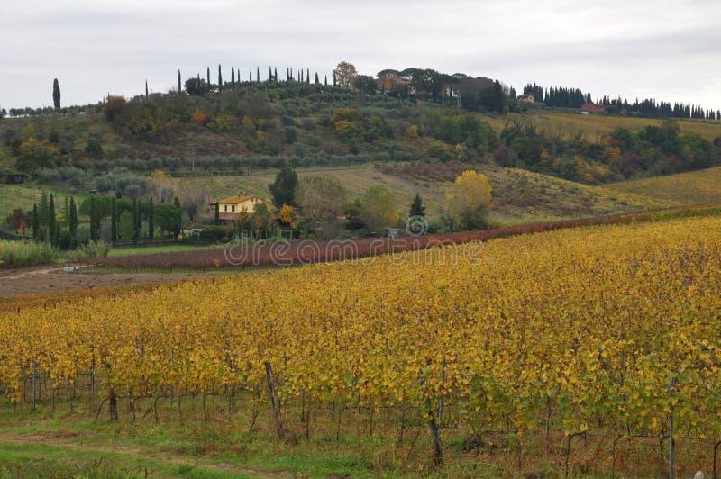 San miniatolandskap av Pisa Tuscany arkivbilder