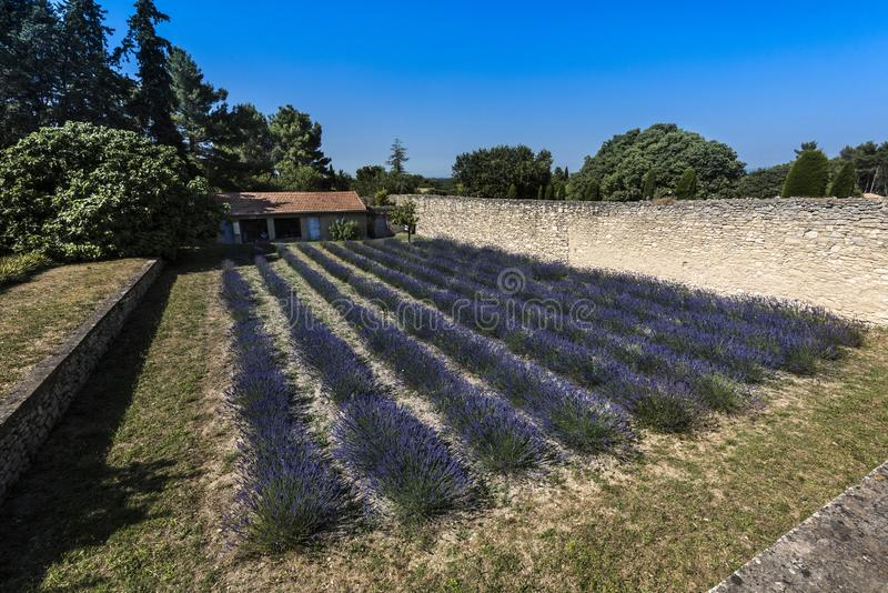 San Paul de Mausole au saint-Remy De Provence photos libres de droits