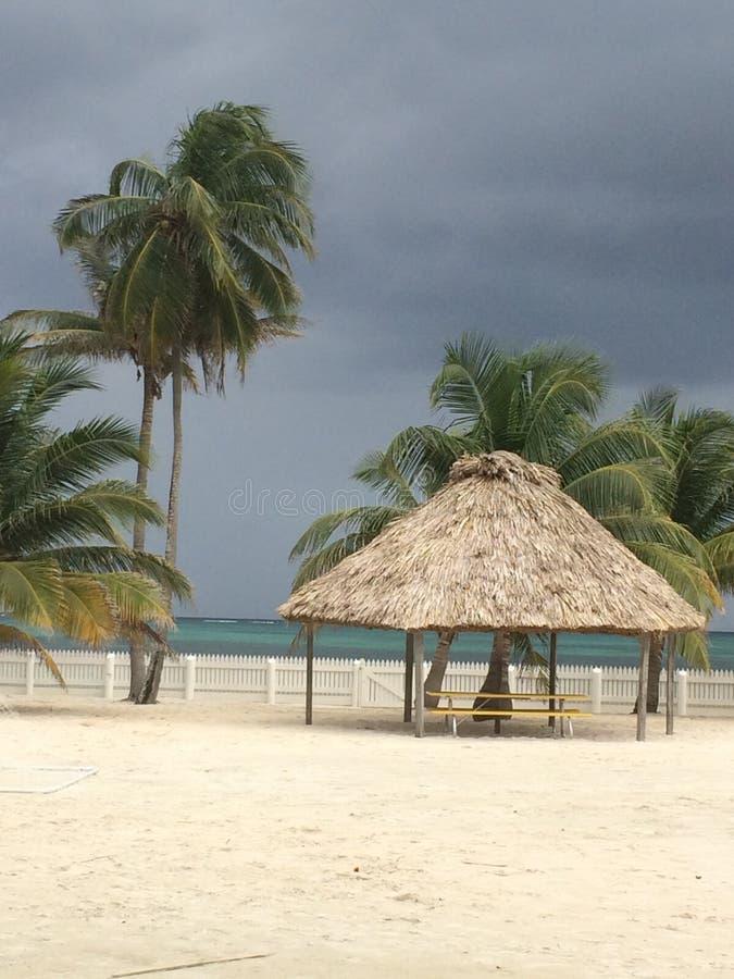 San Pedro, Amber Caye Belize stock fotografie