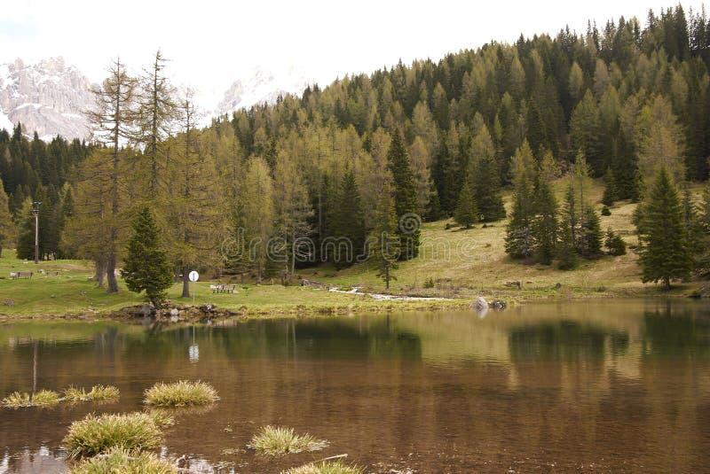 View of a Dolomiti lake. San Pellegrino, Italy - April 06, 2013: Dolomiti mountains lake stock photo