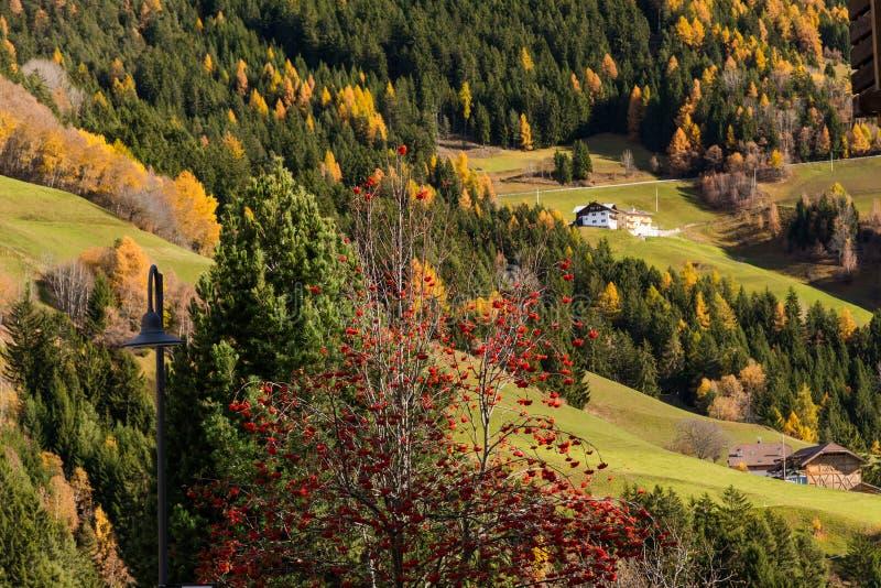 San Pietro di Laion, Bolzano, Itália fotos de stock royalty free