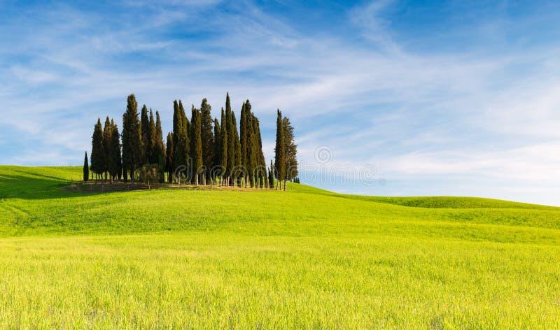 San QUIRICO D ` ORCIA, TOSCANIË ITALIË met rollende heuvels en Toscaanse cipresbomen Gevestigd in het platteland van Val D ` Orci royalty-vrije stock foto's