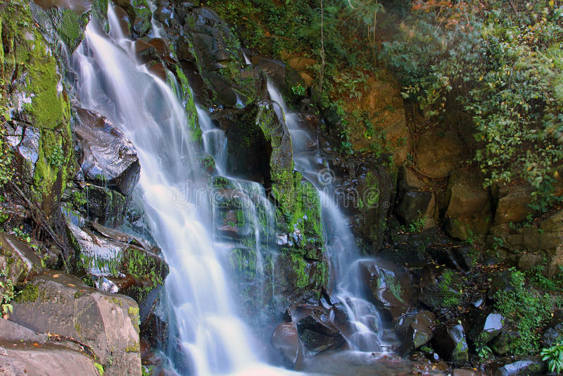 San Ramon Waterfall, Boquete, Chiriqui, Panama lizenzfreie stockfotografie