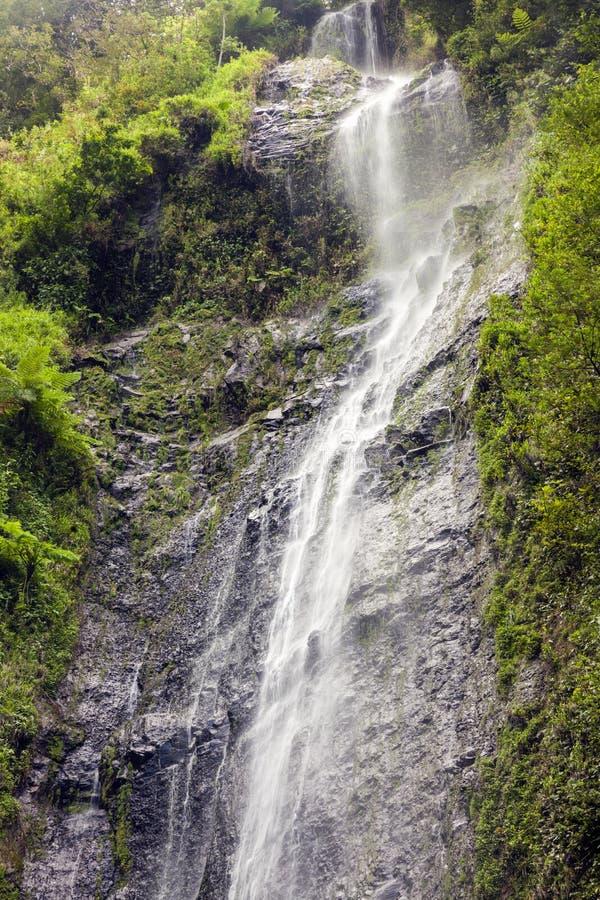San Ramon Waterfalls op Ometepe-Eiland, Nicaragua royalty-vrije stock foto