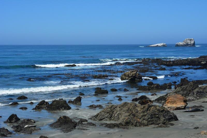San Simeon Central Coast California ursnygg kustlinje fotografering för bildbyråer