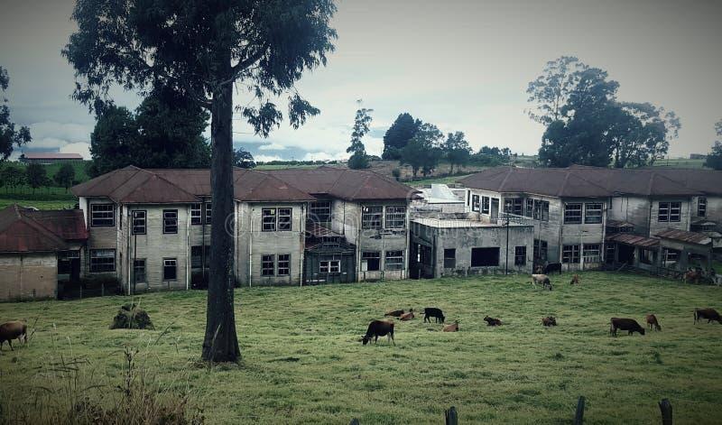 Sanatorio Duran photo libre de droits