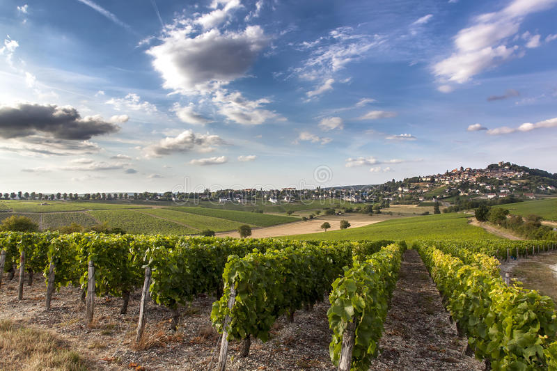 Sancerre w Bourgogne, Francja fotografia royalty free