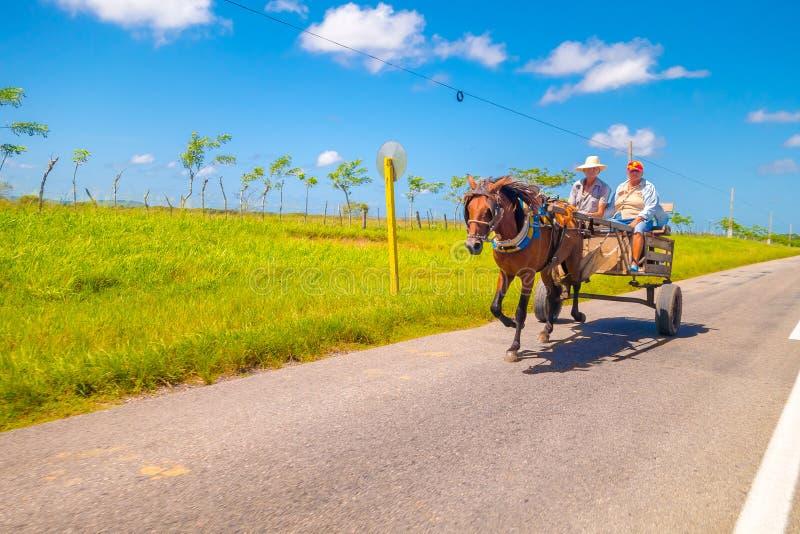SANCTI SPIRITUS, KUBA - SEPTEMBER 5, 2015: Häst arkivfoto