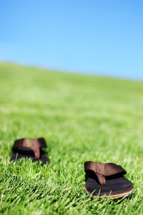 Sandálias na grama fotos de stock royalty free