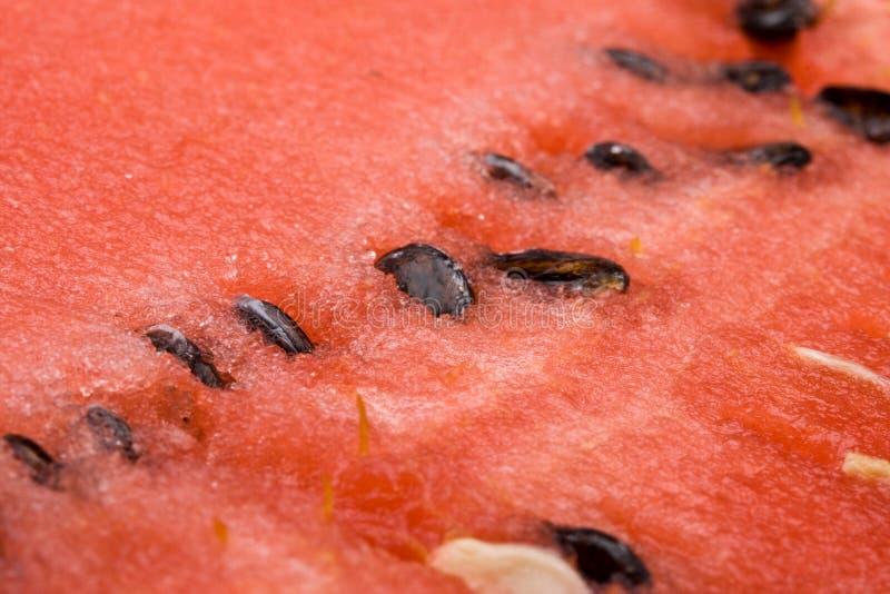 Download Sandía apetitosa fresca foto de archivo. Imagen de coma - 7283300