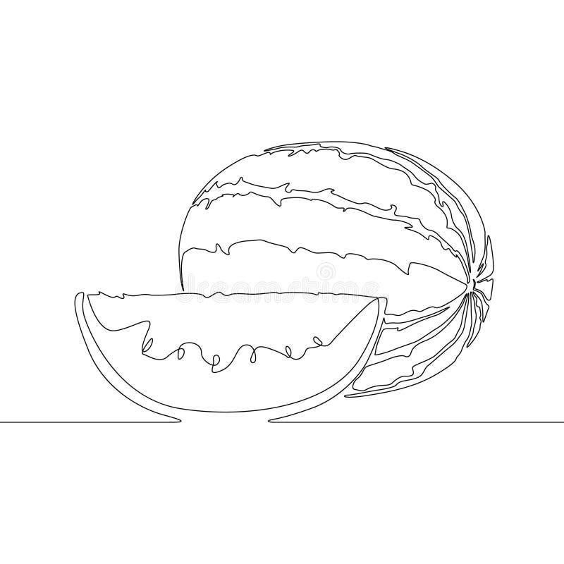 Sandía continua o melón del dibujo lineal Ilustraci?n del vector ilustración del vector